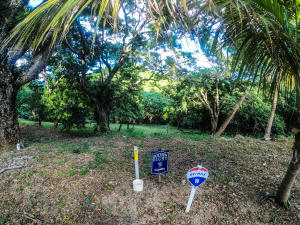 Jonesville Rd., Bodden Bight Estates Lot#9, Roatan,