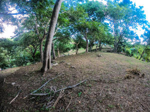 Jonesville Rd., Bodden Bight Estates Lot#6, Roatan,