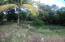 Jonesville Rd., Bodden Bight Estates Lot#6, Roatan,