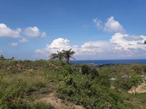 Location and No HOA fees, Ocean View, Convenient, Roatan,
