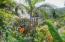 Jungle Haven
