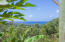 Topridge, Jungle Haven in Topridge, Roatan,