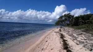 Rocky Point, St. Helene Island, 0.5 Acres, Beachfront, Roatan,