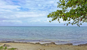 Beachfront lot#LL6, Palmetto Bay Plantation, Roatan,