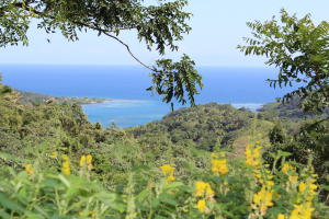Milton Bight Lot L - 2, Turquoise Reef View Lot L-2, Roatan,