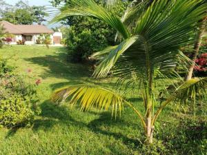 Coral View, Lot #28, Roatan,