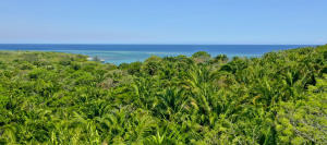Access, Expansive Sea View and Beach, Roatan,