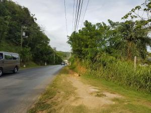 A fews Steps from Airport, Main Rd., Roatan,