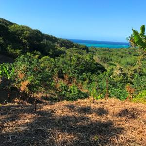 Lot 18 - Ocean View, Roatan,