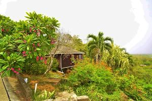 Sandy Bay, Ocean View 2 BD 2 BA, Roatan,