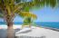 Enjoy the shade of a Coconut Tree