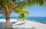 Enjoy the shade of a coconut tree from your own private beach at Pangea Beach