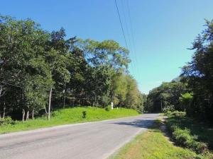 Sandy Bay, 2.10 acre Prime Road Front, Roatan,