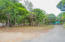 View of the lot from the access road, this is the lot located on Mangrove Bight.