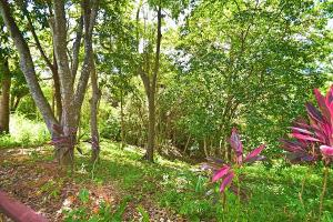 in Turtling Bay, 0.13 acres for B&B, Roatan,