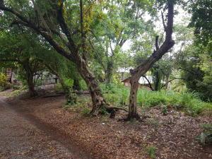 Sandy Bay, 0.271 acre lot, Roatan,