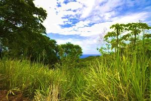 Brass Hill Lot9,10,11, Roatan,