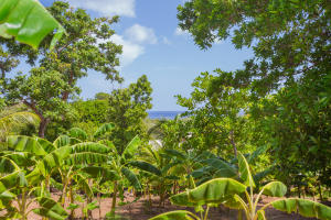 Sandy Bay, 0.173 acre Peek a boo view lot, Roatan,
