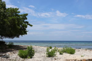 Parrot Tree Plantation, Beach Front Lot #12, Roatan,