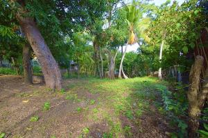 Income Potential Lot, Roatan,