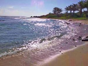 Playa Linda at Pumpkin Hill, SEA for miles, 97 ft of Beach, Utila,