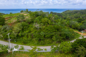 across Jonesville entrance, Residential/Commerc Roadfront, Roatan,