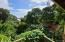 The Eco House, Utila,
