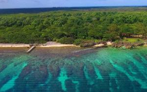 Over 3 acres of Beachfront, Sandy Salty Shores Big Rock, Utila,