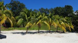 La Giralda, Beach-Front Lot# VA, Guanaja,