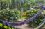 The lush tropical gardens are a perfect place to lay back and relax, come and enjoy one of our hammock!