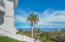 Enjoy tropical palm trees and ocean views.