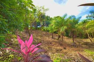 Icaco Lot 7, West Bay, Tamarind Drive, Roatan,