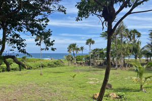 Oceanview close to Beach, The Prized Pumpkin Patch Great, Utila,