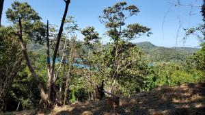 Jonesville Point, 2.3 Acre, Ocean Views, Roatan,