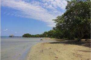 North Shore beach, Palmetto/Crawfish Rock, Roatan,