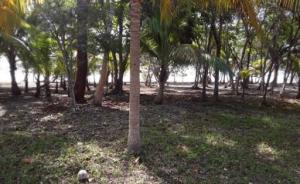 Beachfront Lot at Silver Garde, Utila,