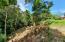 Paved Roads,Topridge Sandy Bay, Half Acre, Ocean View, No HOA, Roatan,