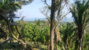 Ocean Views, 0.55 Acre Hillside Lot, with, Roatan,