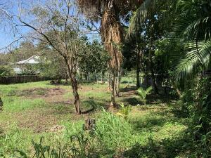 Minutes from town, El Corral, 0.18 Acre Home Site, Utila,