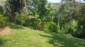 Barrio Dorcas, West End .47 acre lot, Roatan,