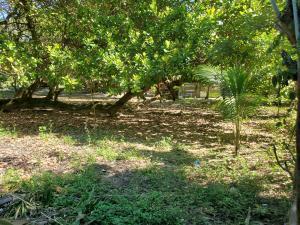 Flowers Bay, 0.87 acre, Roatan,