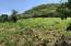 Best view on Utila Lot F6, Stellar Views Pumpkin Hill, Utila,