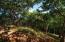 20210727203505198338000000-o Springwater Resorts, Camp Bay, Spectacular Hillside Homesite, Roatan, (MLS# 21-396)
