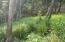 Turtling Bay Lot 16, Roatan,