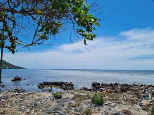 Waterfront, Oak Ridge Cay, 0.23 Acre with 77 Ft, Roatan,