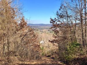 Trails End, Dover, AR 72837