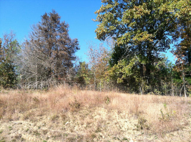 Large photo 1 of land for sale at  Chimney Rock , London, AR, listed by The Pro Team