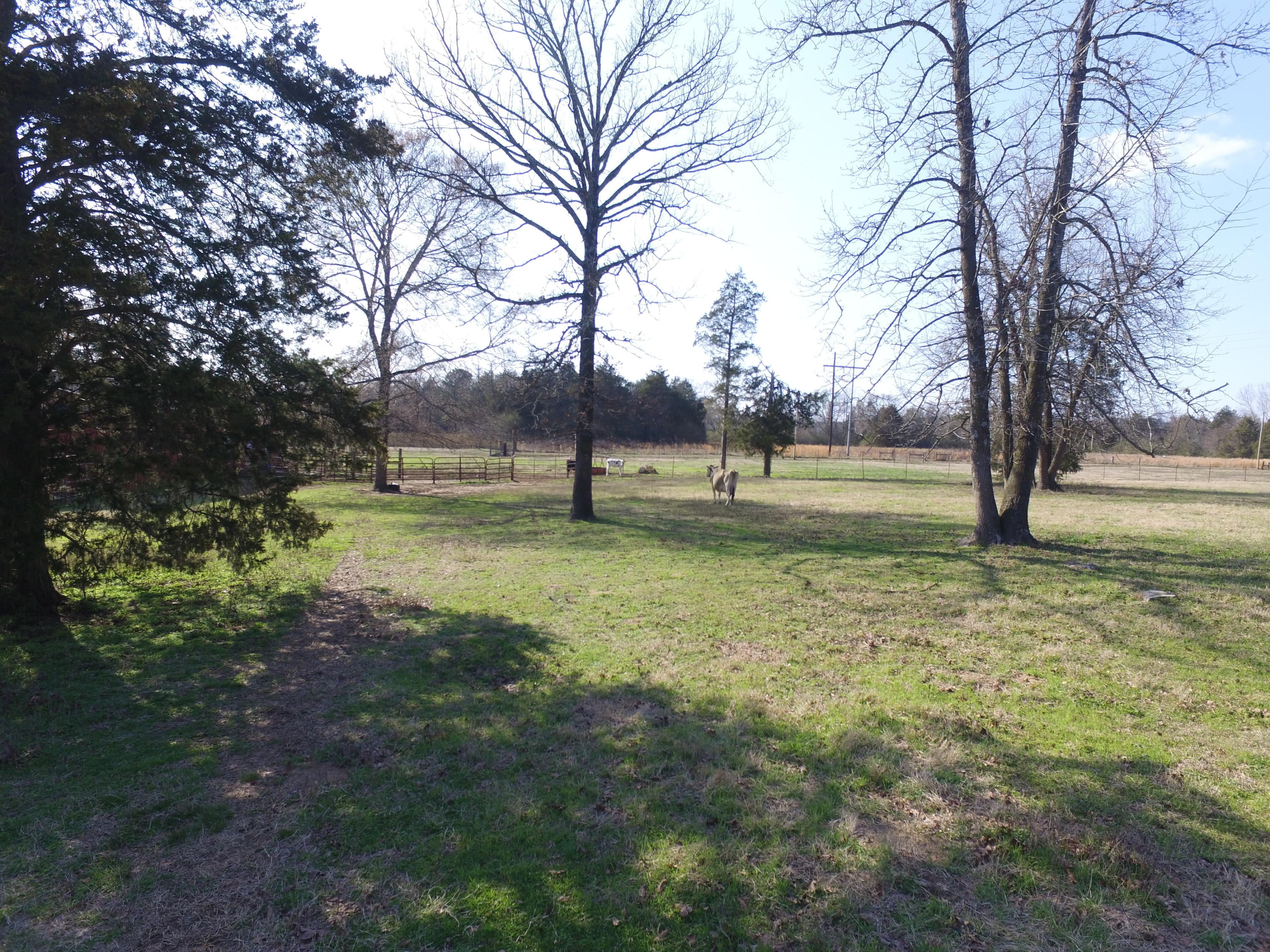 Large photo 73 of home for sale at 9945 AR-352 , Clarksville, AR