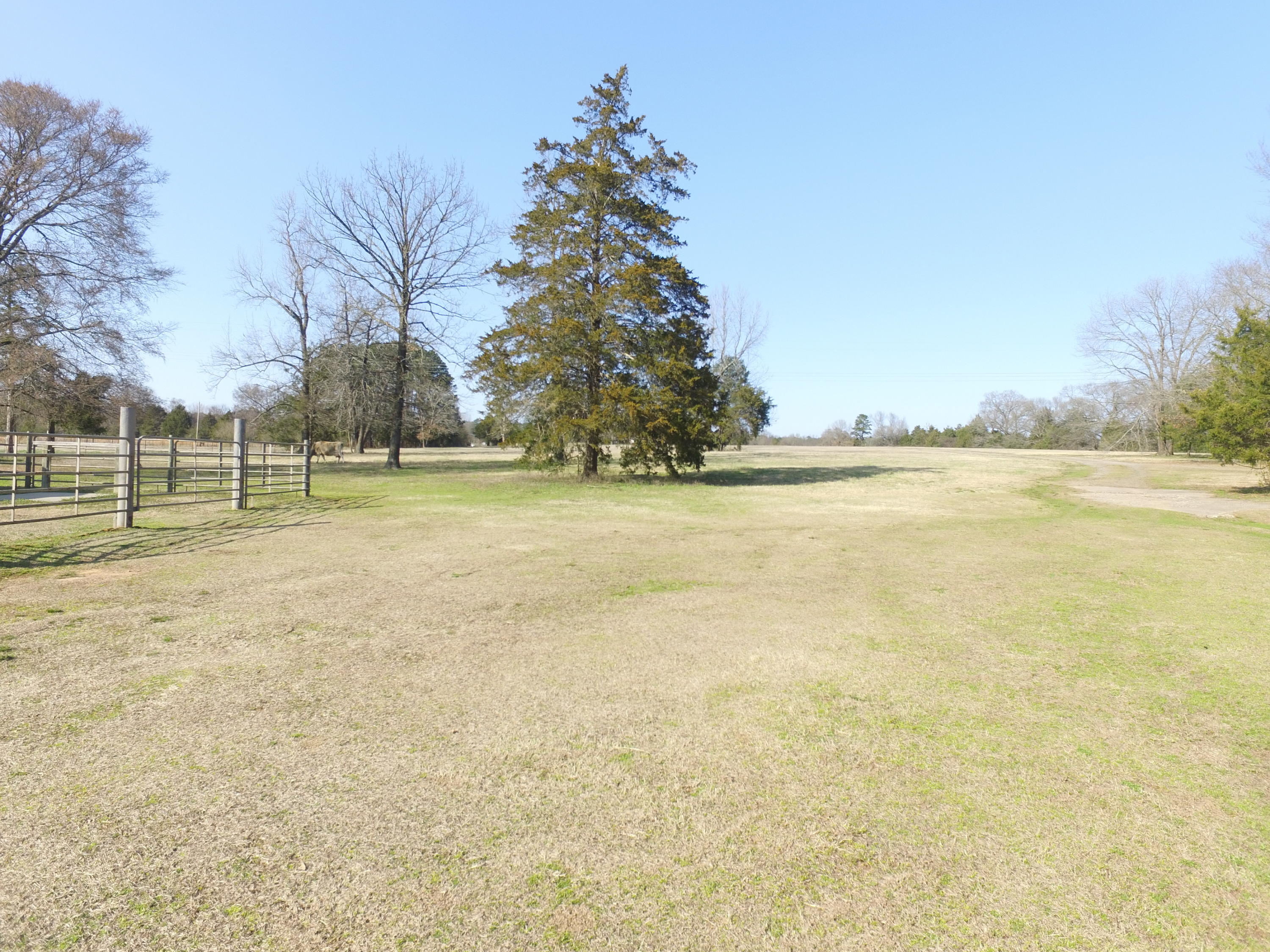 Large photo 74 of home for sale at 9945 AR-352 , Clarksville, AR