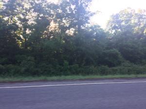 SR 164, Dover, AR 72837
